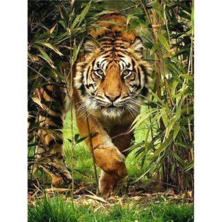 Broderie diamant - Tigre